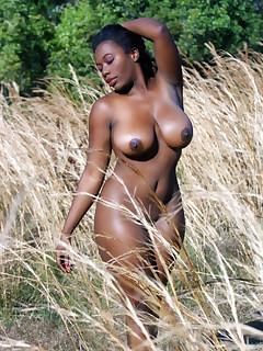 Black Erotica Pics